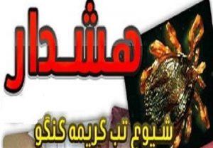 ابتلای ۳ تهرانی به تب کریمه کنگو صحت دارد؟!