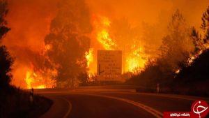 تصاویری از آتش سوزی گسترده در پرتغال با ۲۵ نفر کشته!