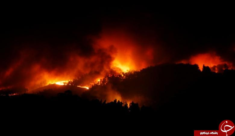 آتش سوزی جنگل در پرتغال