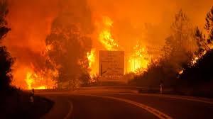 آتش سوزی در پرتغال