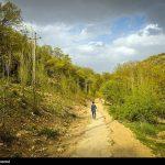 بهشت گمشده در شیراز
