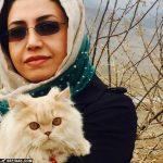 الهام فخاری: عکس با گربه مان را پسرم گرفت!