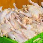 قیمت مرغ از ۸۰۰۰ تومان گذشت   گرما دلیل گرانی است!