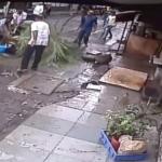 مرگ دردناک مجری تلویزیون با سقوط درخت!