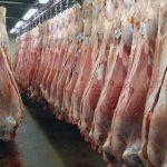مرگو میر تب کریمه کنگو در تهران نداشتیم| گوشت با مهر دامپزشکی بخرید