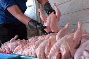 مرغ دوباره گران شد! قیمت به ۸۳۰۰ تومان رسید