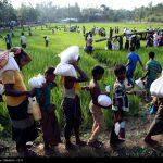 توزیع کمکهای ایران به آوارگان روهینگیایی میانمار
