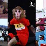 بچه، میمون های فضایی ایران متولد شد!