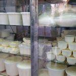 هشدار برای استفاده از لبنیات سنتی در هیئت ها |به هیچ وجه شیر و ماست سنتی نخورید