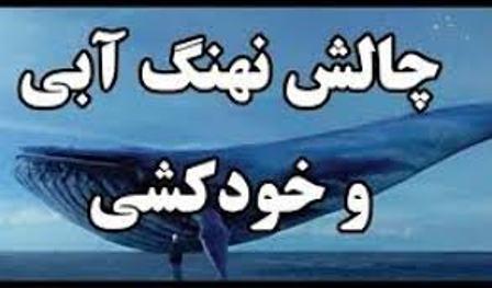 سازندگان چالش نهنگ آبی دستگیر شدند!