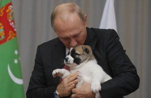 سگی که پوتین به عنوان هدیه تولد دریافت کرد!