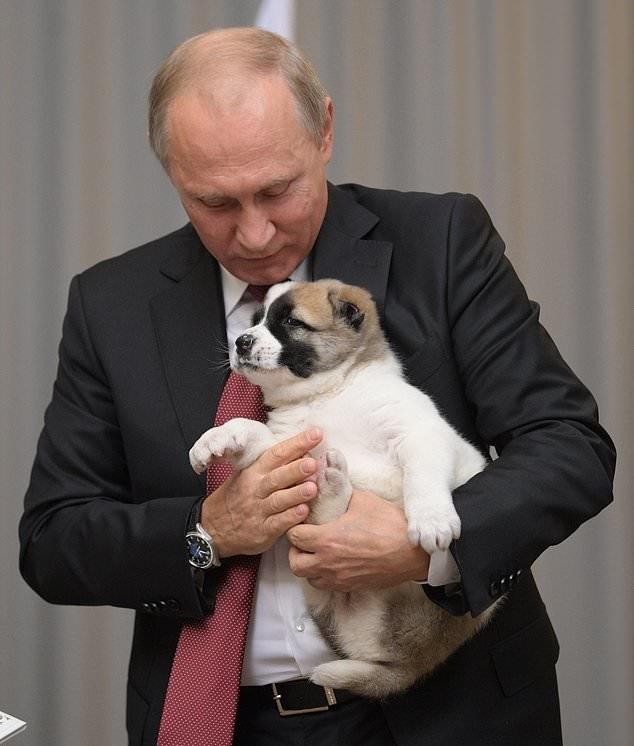 دادن سگ به عنوان هدیه تولد پوتین