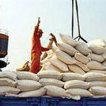 از شایعه تا واقعیت برنجهای آلوده سر سفره مردم