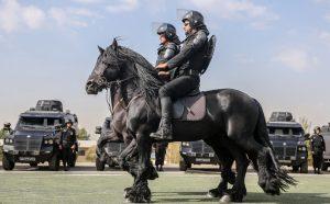 پلیس اسب سوار ایران!
