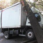 برخورد شدید کامیونت با درخت در خیابان ولیعصر(عج) تهران