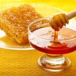 معجزه گیاهان دارویی در درمان سرفه