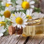 تأثیر معجزهآسای بابونه در درمان سرماخوردگی و سایر بیماری ها!