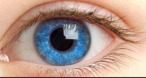 توصیه هایی برای سلامت چشمها