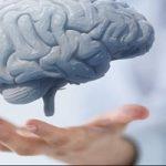 هشدار | این عادات سلامت مغزتان را تهدید میکنند!