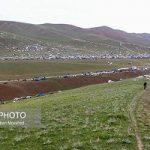 اسب سواری خانم های ایرانی در بیست و پنجمین جشنواره کلیبر