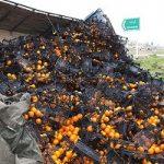 واژگونی کامیون حامل میوه در لرستان و واکنش جالب مردم!!