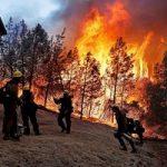 تصاویری از کالیفرنیا قبل و بعد از آتش سوزی مخرب اخیر!!