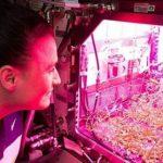 ماجرای زن فضانورد که در فضا لوله کشی می کند!!!