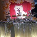 برگزاری جشن تولد و مراسم ترحیم برای سگهای لاکچری در تهران!!