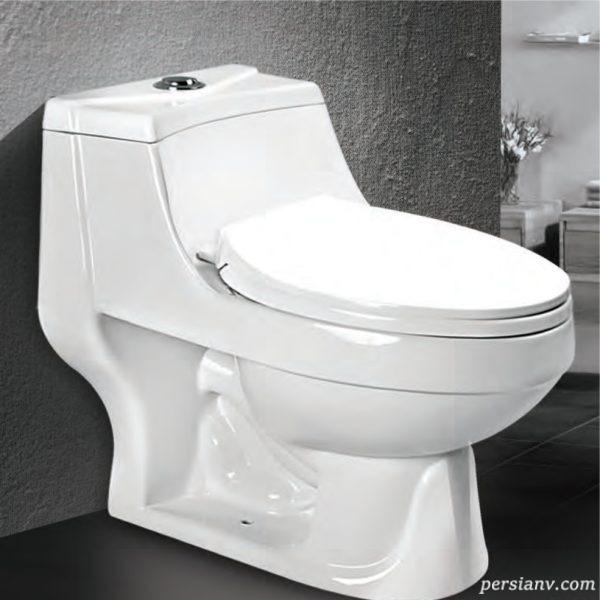 بررسی وضعیت سلامت قلب با توالت فرنگی
