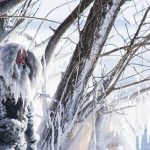اقدام عجیب و باورنکردنی مرد میانسالی در سرمای قطبی