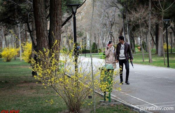 تصاویری دیدنی از خودنمایی شکوفههای بهاری در مشهد