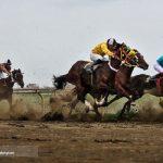 تصاویری از کورس اسبدوانی گنبد کاووس