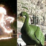 ماجرای آتش زدن طاووس در شیراز به خاطر خرافات!!