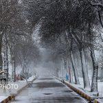 تصاویری از بارش برف بهاری در اردبیل در آخرین روز فروردین ۹۸!!