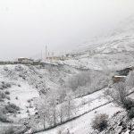 تصاویری دیدنی از زیبایی های بی بدیل بارش برف بهاری!