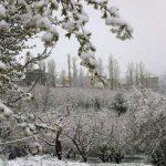 تصاویری از بارش برف در اردیبهشت ماه ۹۸ در ارومیه!!