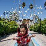 شمیم بهشتی بهار نارنج شیراز در اردیبهشت ماه + تصاویر