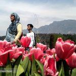 تصاویری دیدنی از جشنواره گلهای لاله در بهشت روی زمین