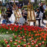 تصاویری دیدنی از هفتمین جشنواره گل های لاله کرج!