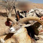 دستگیری دو شکارچی حیوانات خاص در تهران | فروش گوشت با قیمت گزاف!!