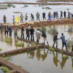 کمک جوانان لبنانی به مناطق سیل زده اهواز
