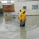 مارهای خطرناک در مناطق سیلزده سیستان و بلوچستان!!