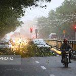 تصاویری از خسارات باد شدید و طوفان در تهران!!