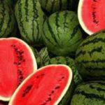 علت گران شدن هندوانه در بازار چیست!؟