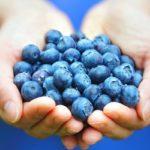 خواص بلوبری , میوهای که با خوردن آن به پزشک نیاز نخواهید داشت!