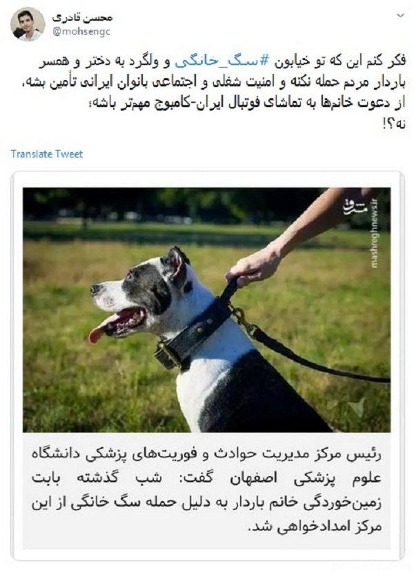 حمله سگ خانگی به زن باردار
