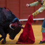 مسابقات گاوبازی اسپانیا و لحظه حمله غافلگیرانه گاو به تماشاچی!!