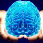 دشمنان مغز خود را بشناسید و از آنها دوری کنید!!