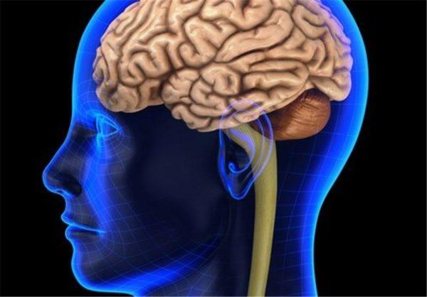 دشمنان مغز