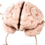 شگفت انگیزترین توانایی های مغز انسان که نمی دانستید!!